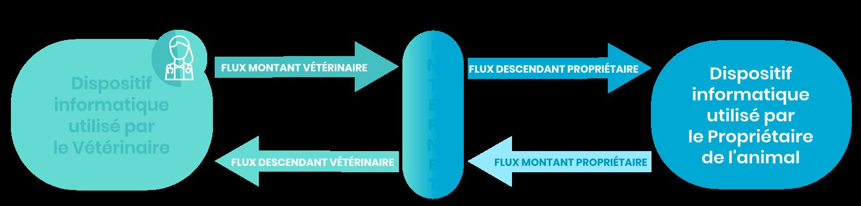 flux vidéo et dispositif pour mettre en place la télémédecine vétéinaire
