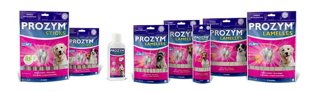 Découvrez la gamme Prozym pour l'hygiène bucco-dentaire des chiens et chats